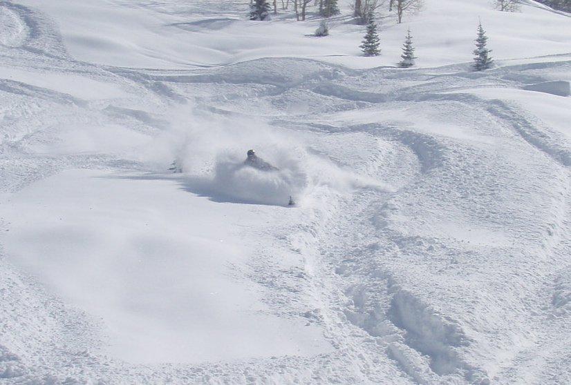 Silly deep snow on a sled
