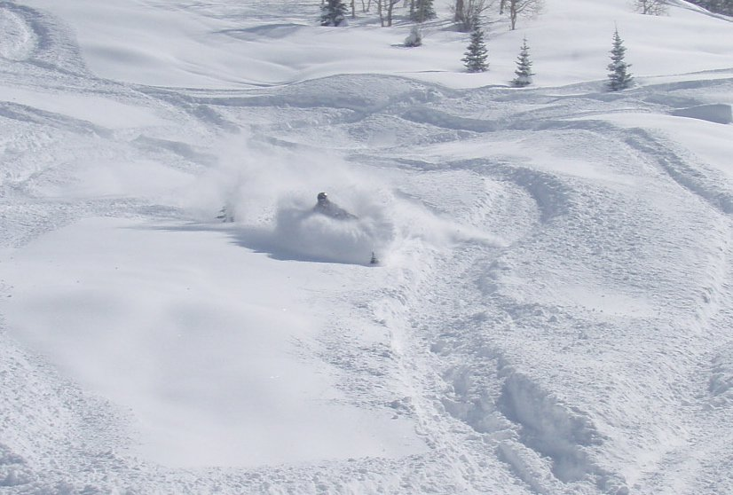Silly deep snow on a sled