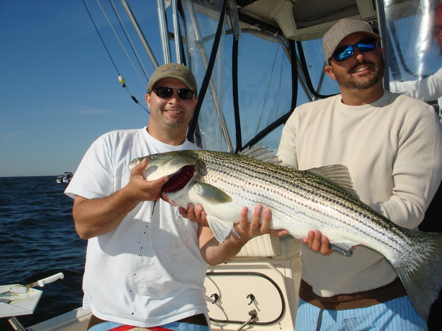 Bailin!!! Striped Bass