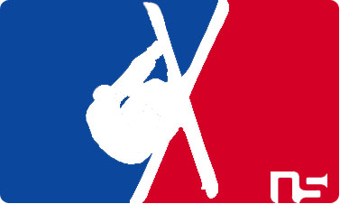 Ns logo sticker