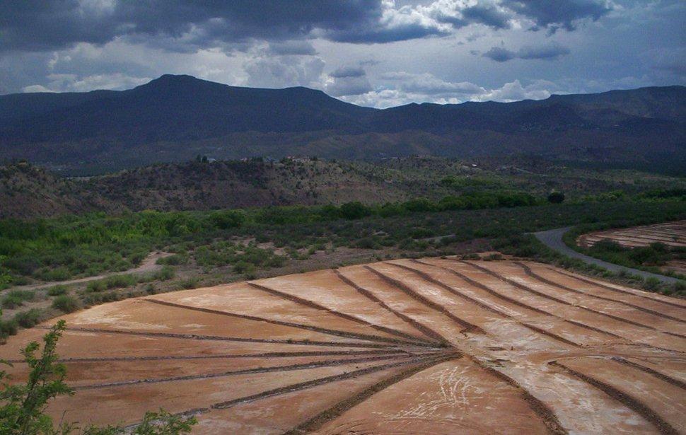 Arizona field