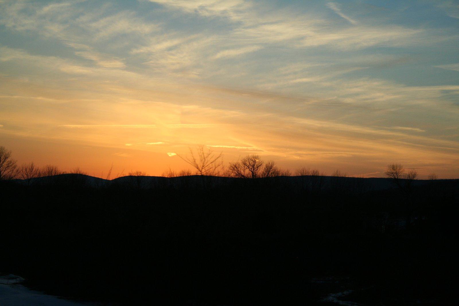 Sunset Bitch