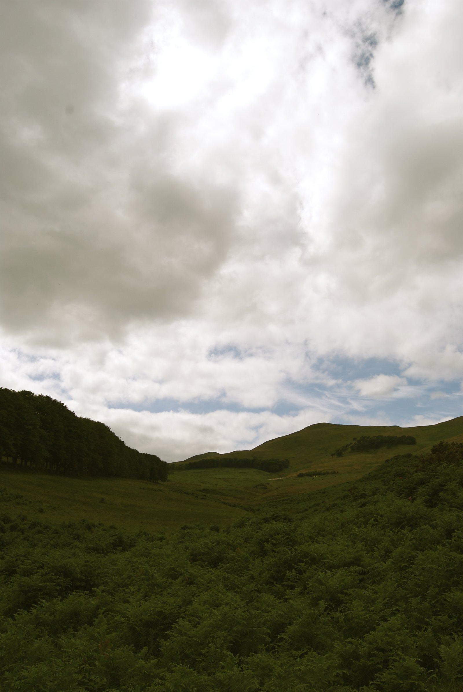 Hills no.2