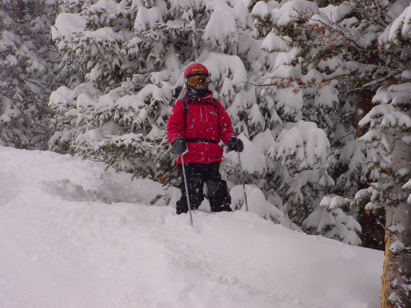 Breck pow day 02