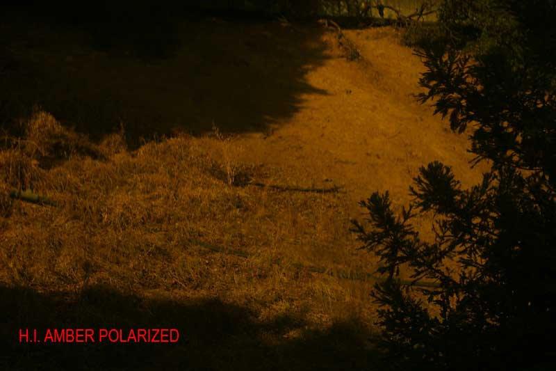 Oakley Test - H.I. Amber Polarized