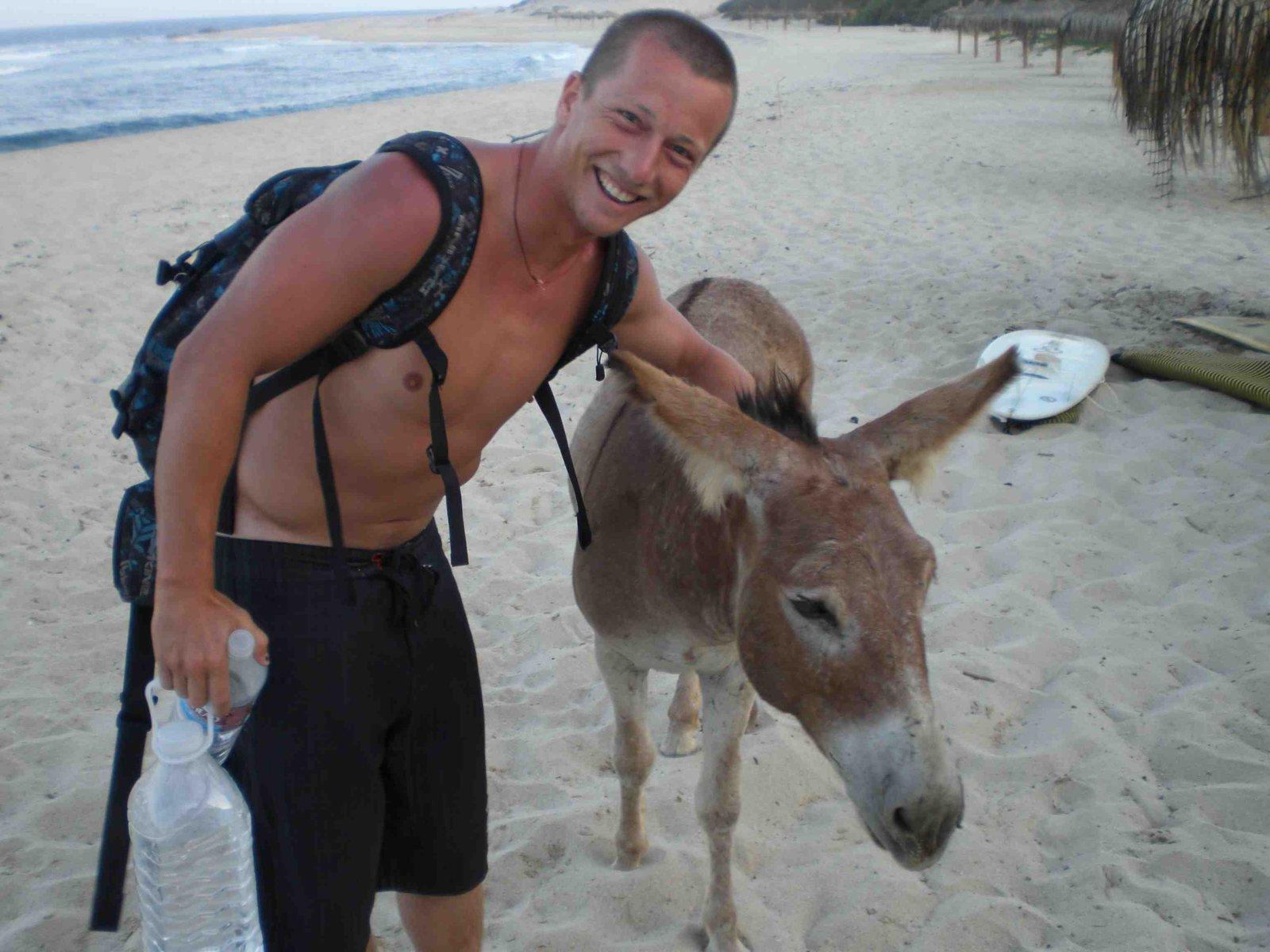 Pep Donkey