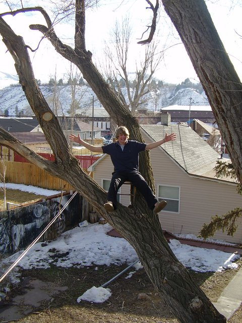 Me in my tree