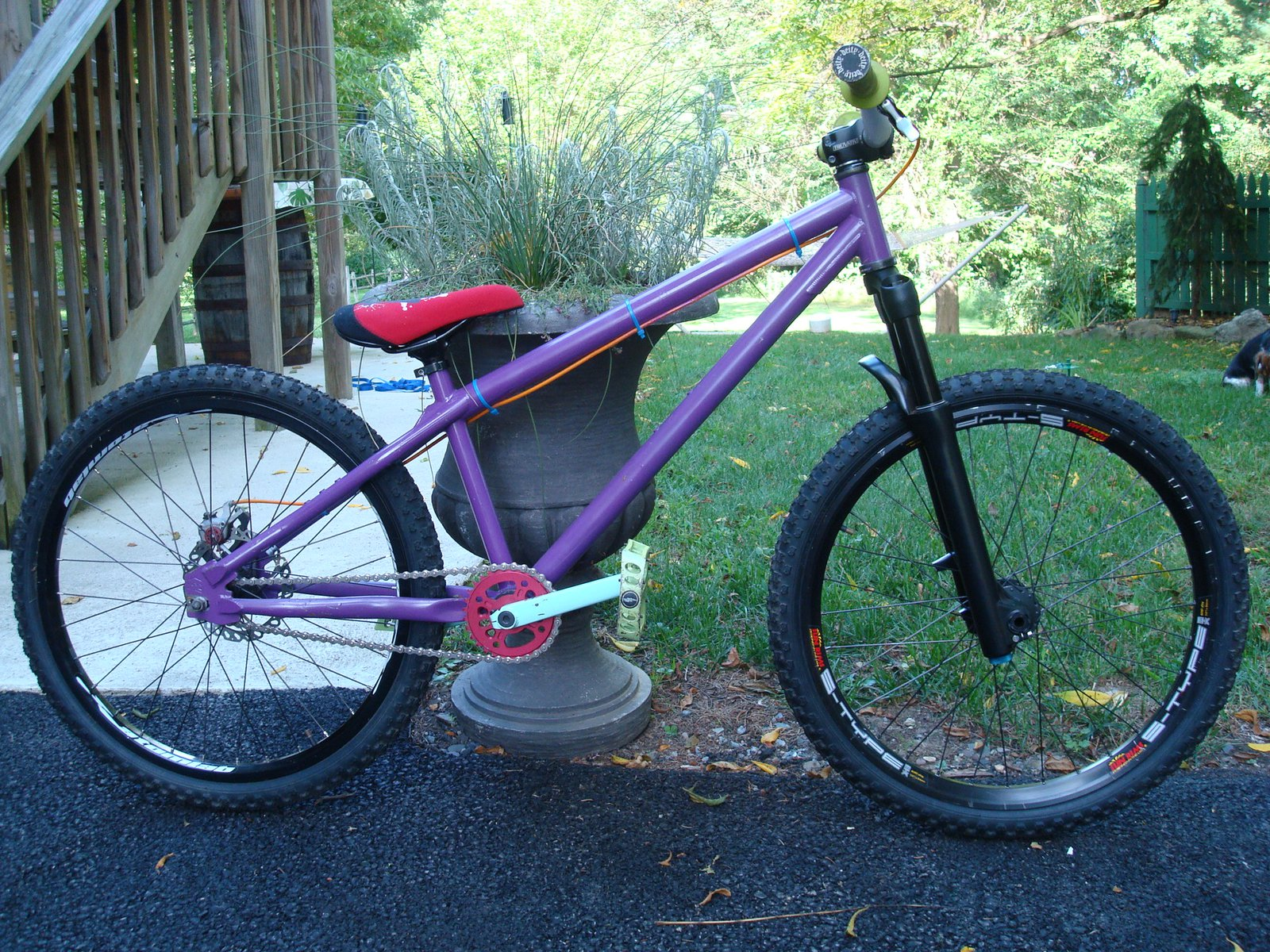 Whip for sale - 1 of 3