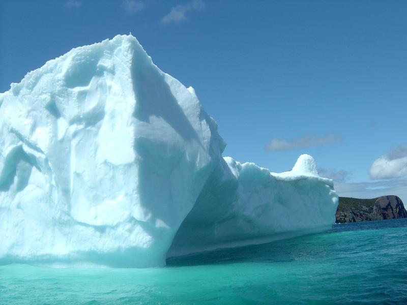 Iceberg in my yard