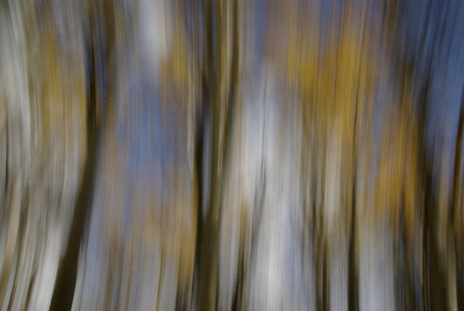 Impressionist photograph