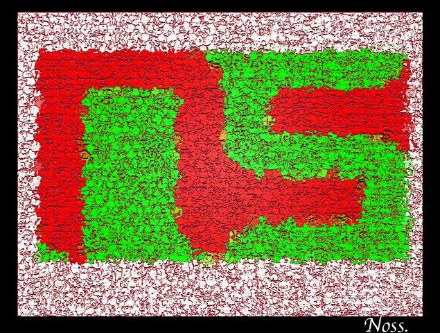 NS by Noss.