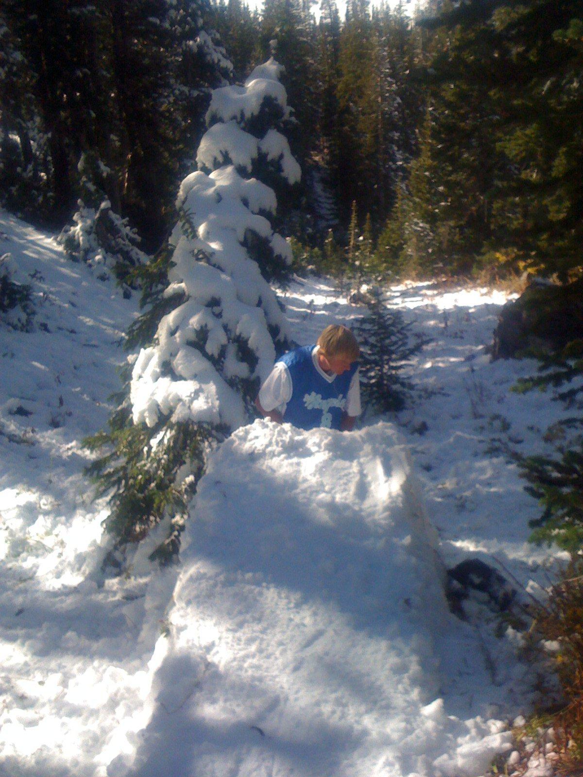 OCT 6th Setting Up Tree Jib