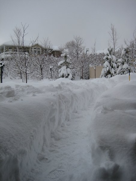 3.5 Foot snow walls