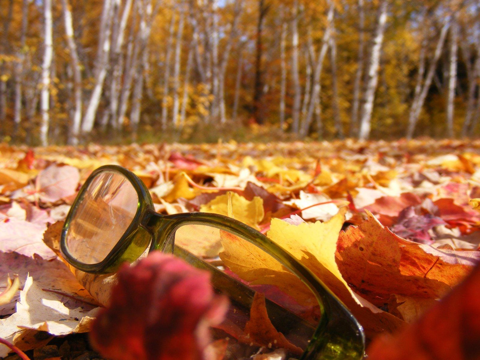 Broken glasses. fall colors. NIG?