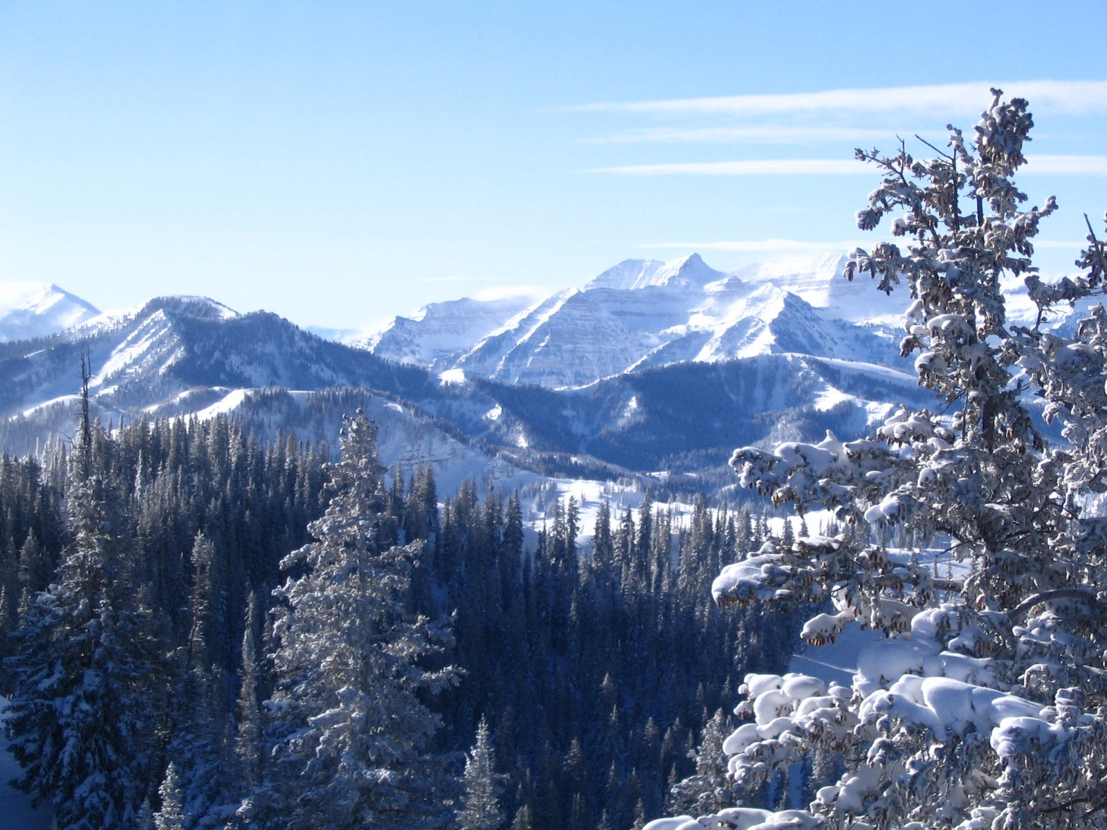 Looking towards grizzly Gulch