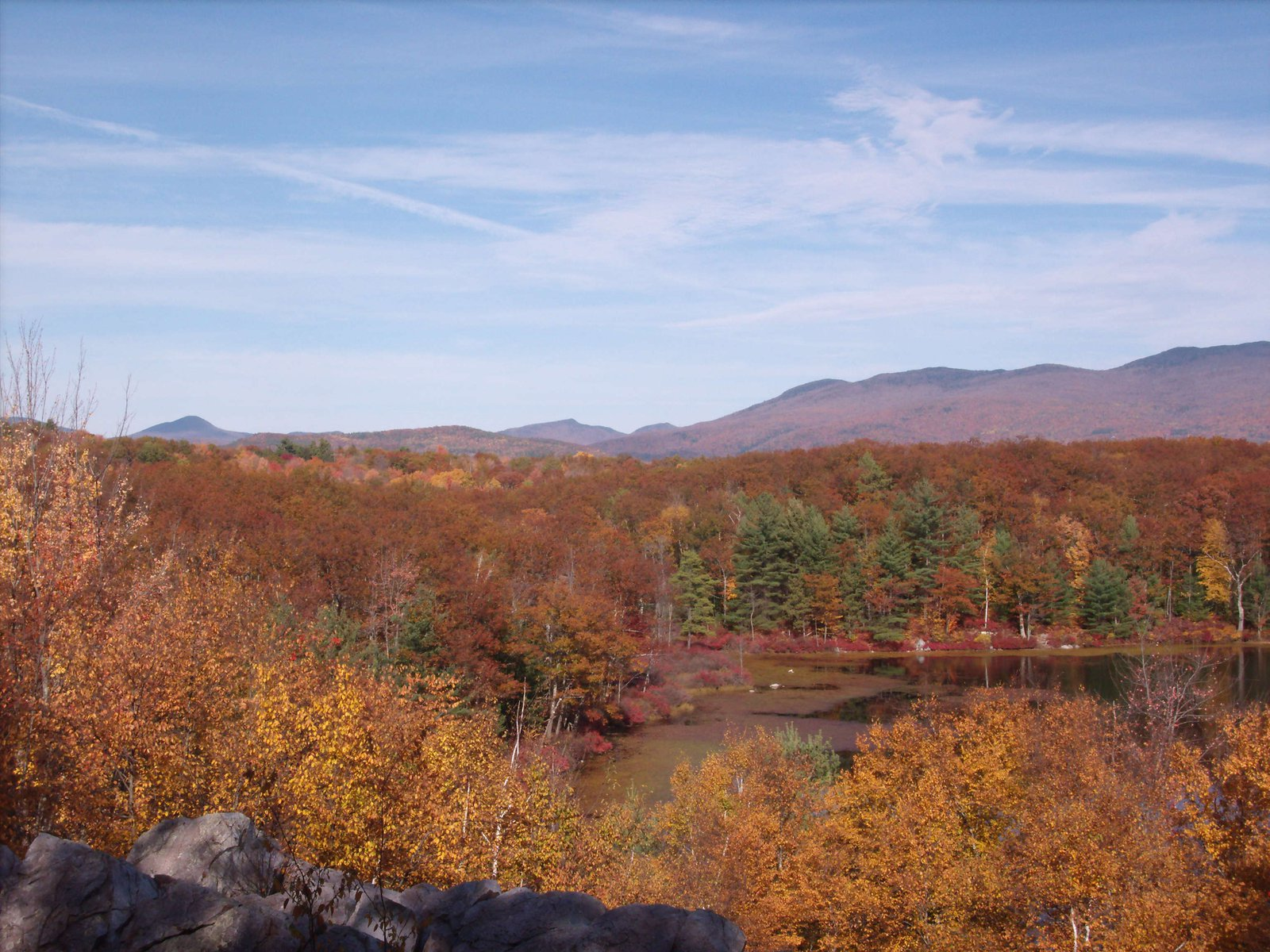 Overlooking Rocky Pond in Autumn