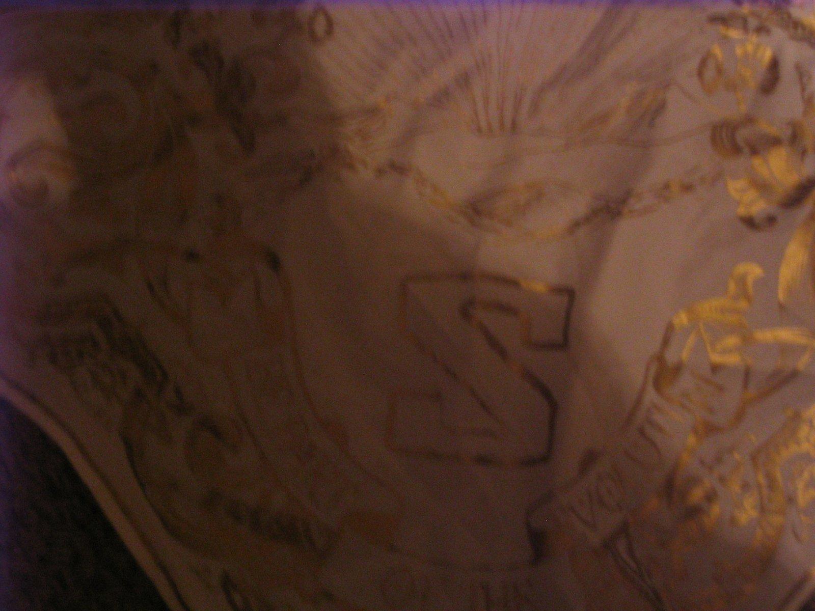 Bandana detail (comes with coat)