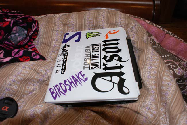 Birdshake Headwear Decal!