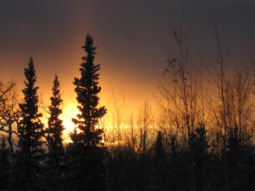 I love Alaska.