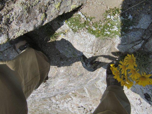 Climbing up the Pfiefferhorn