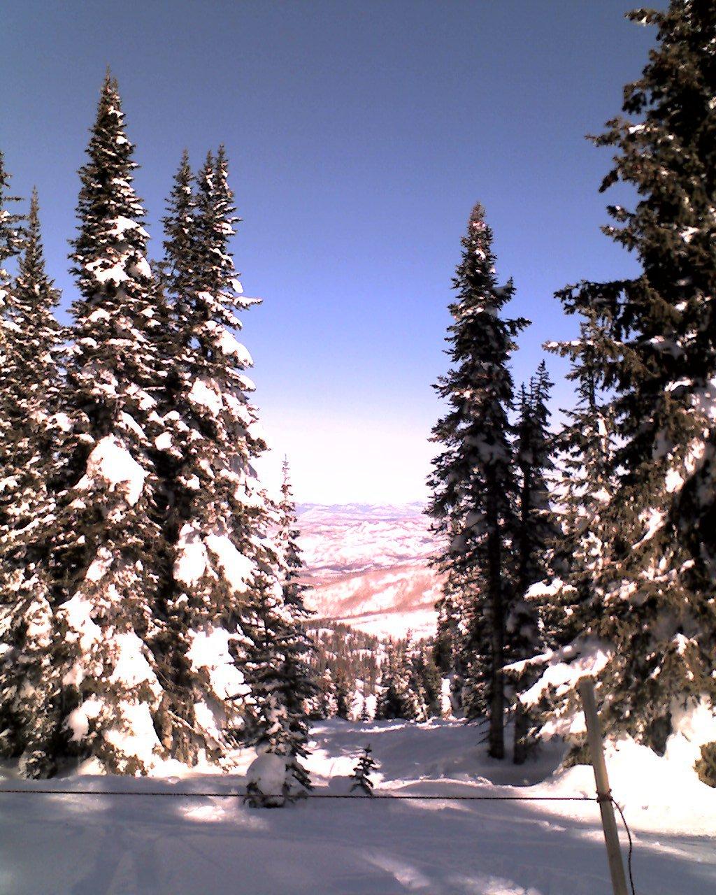 Skiing - 1 of 18