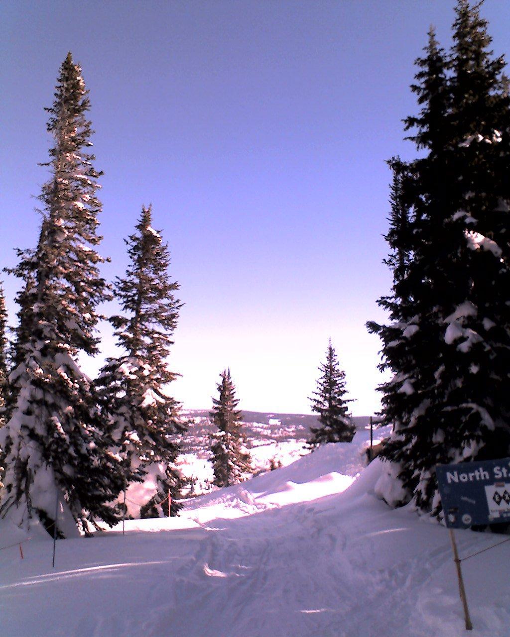 Skiing - 2 of 18
