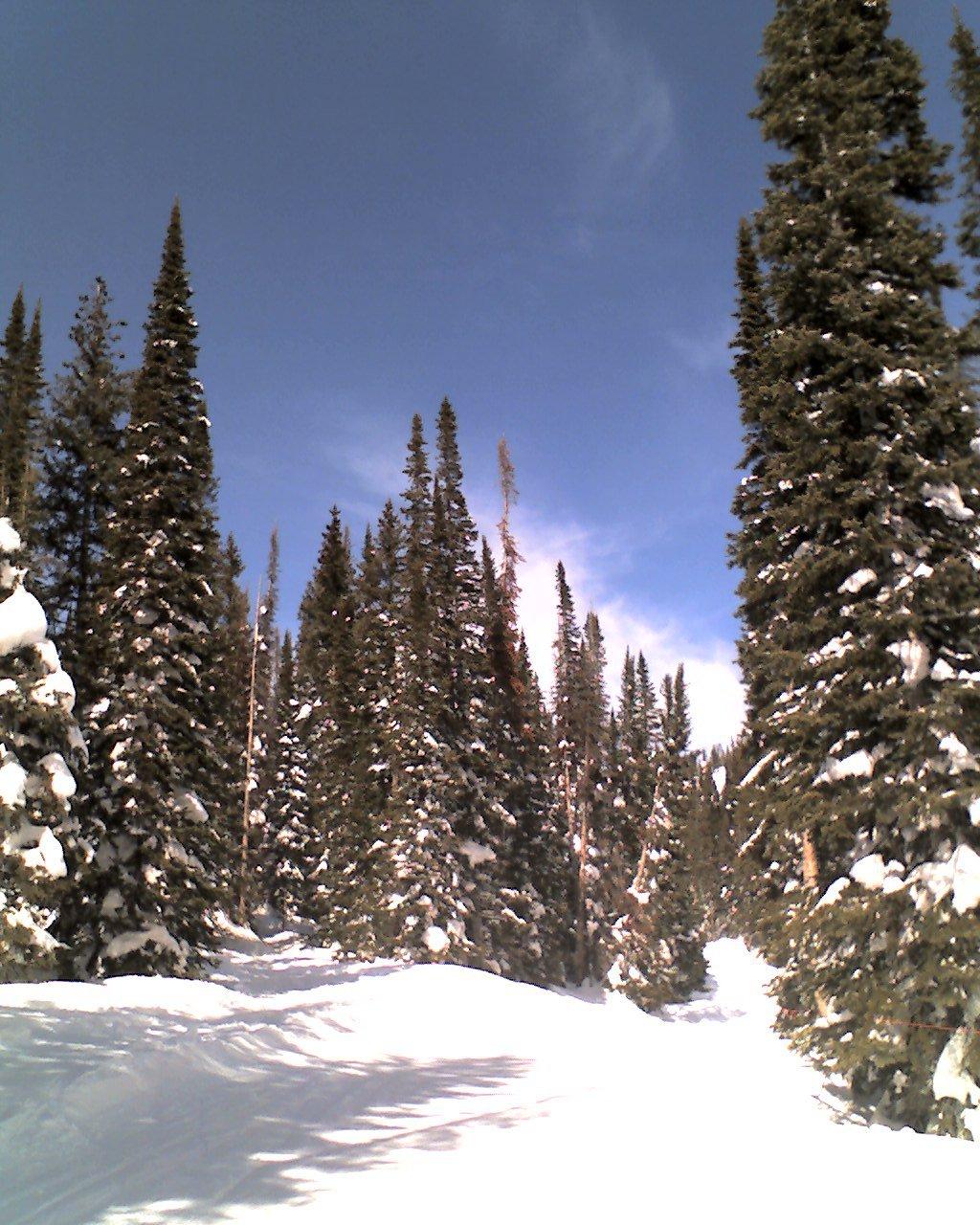 Skiing - 3 of 18