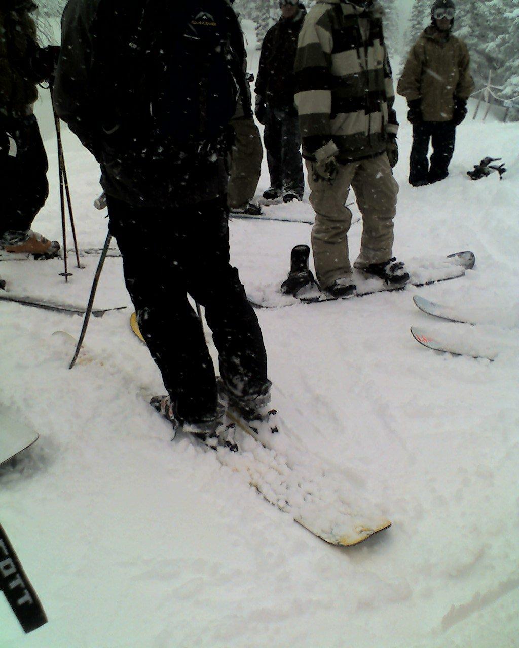 Skiing - 10 of 18