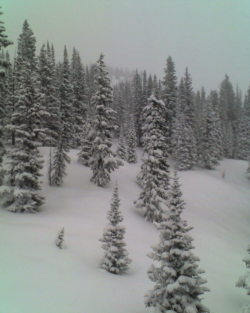 Skiing - 12 of 18