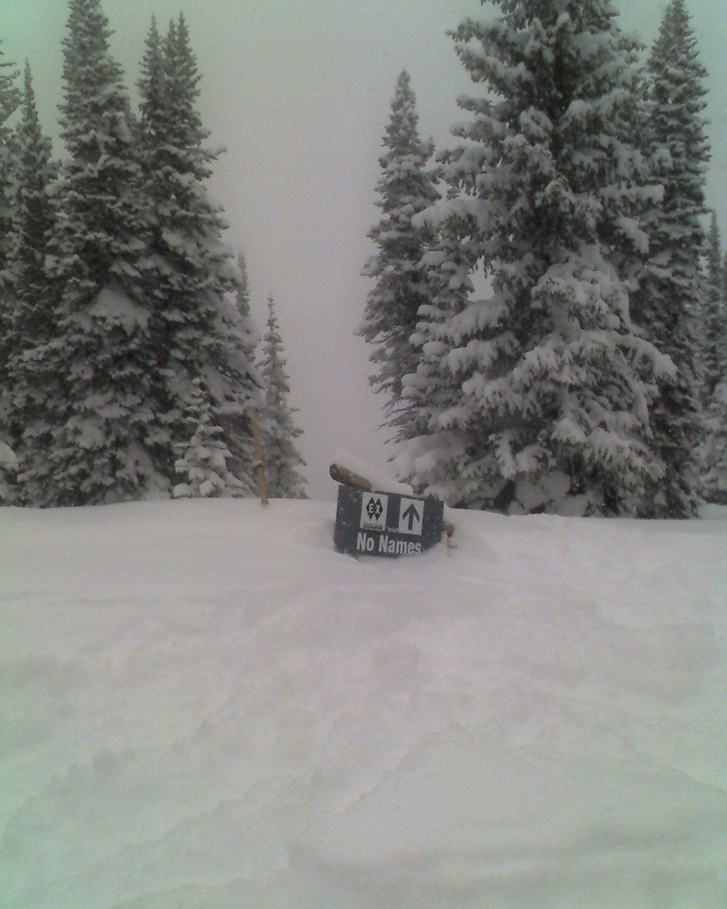 Skiing - 14 of 18