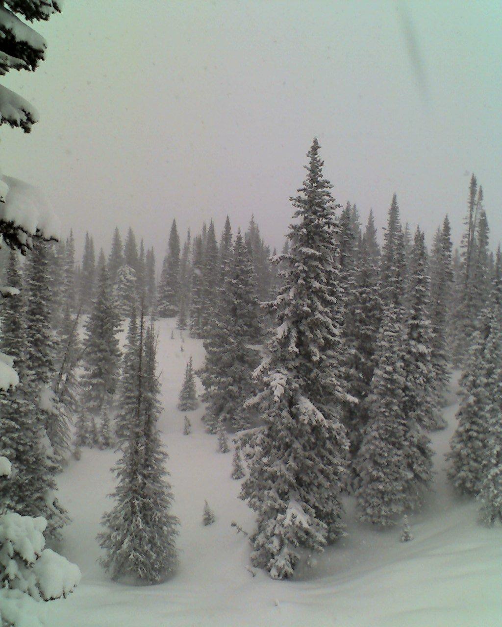 Skiing - 16 of 18