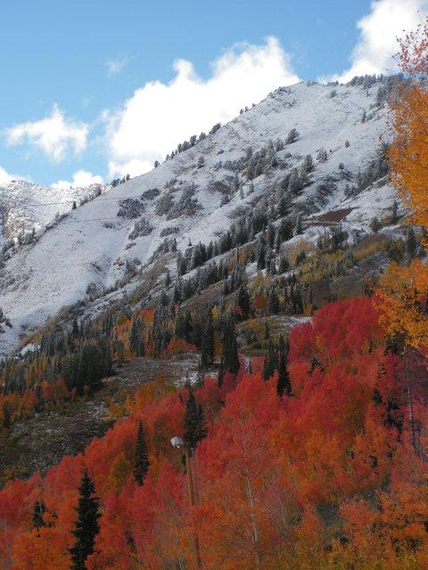 Fall meets winter