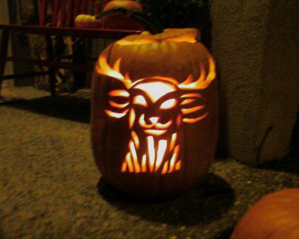 Jagermister pumpkin