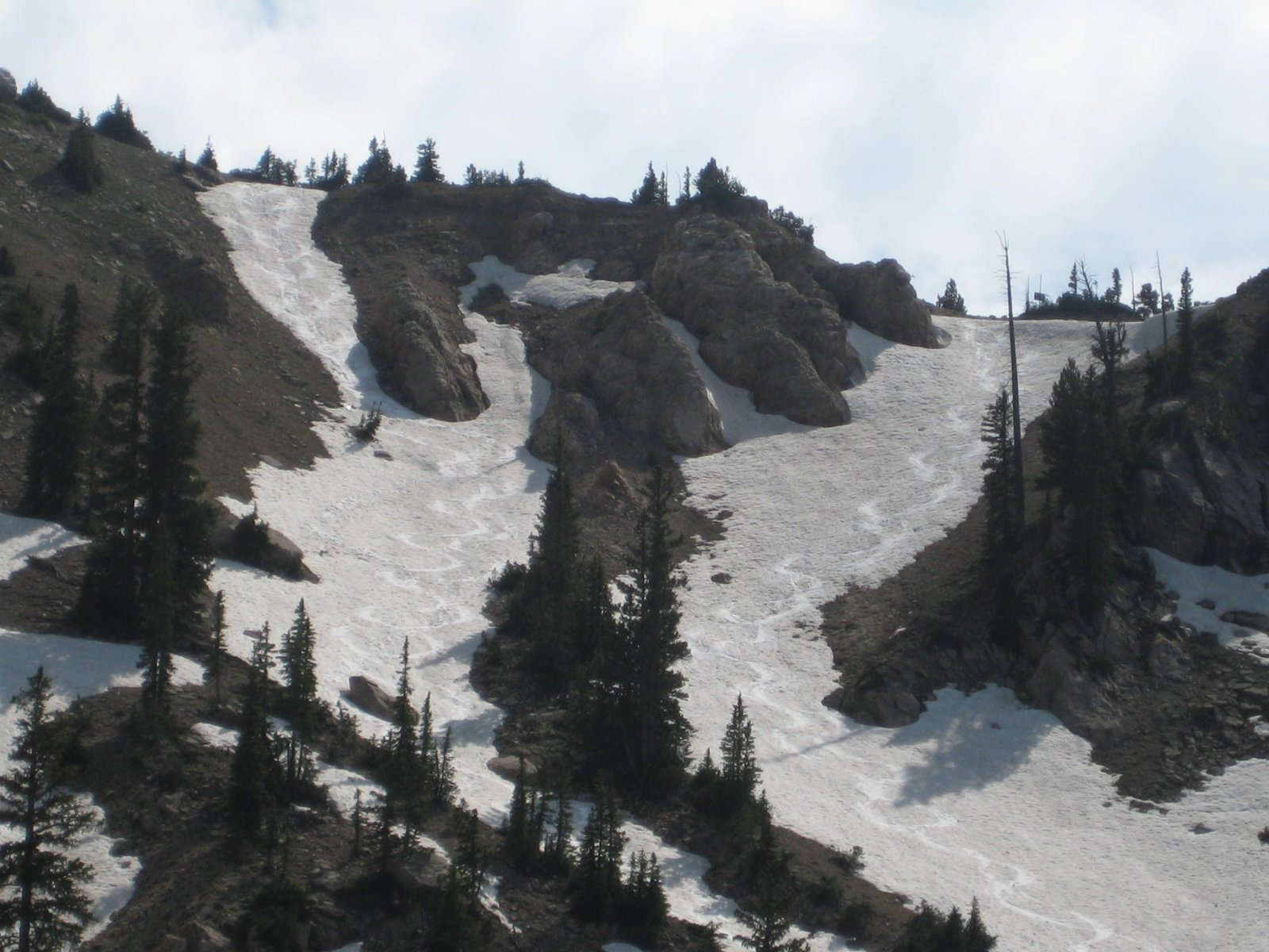 Tracks on sunset peak