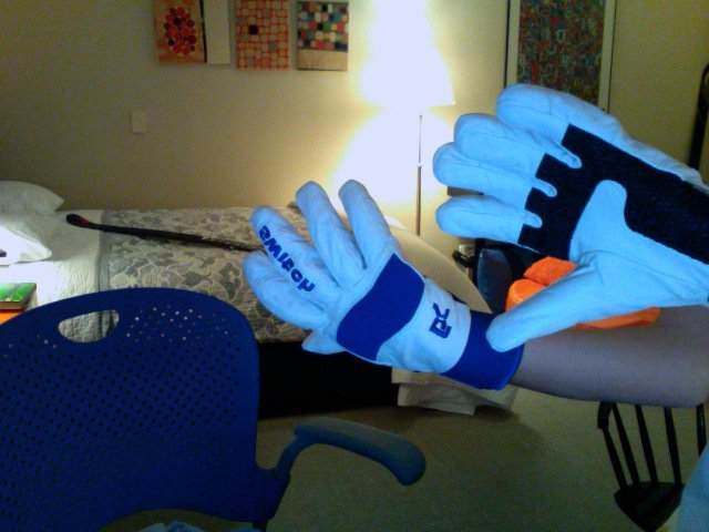 Switch Gloves
