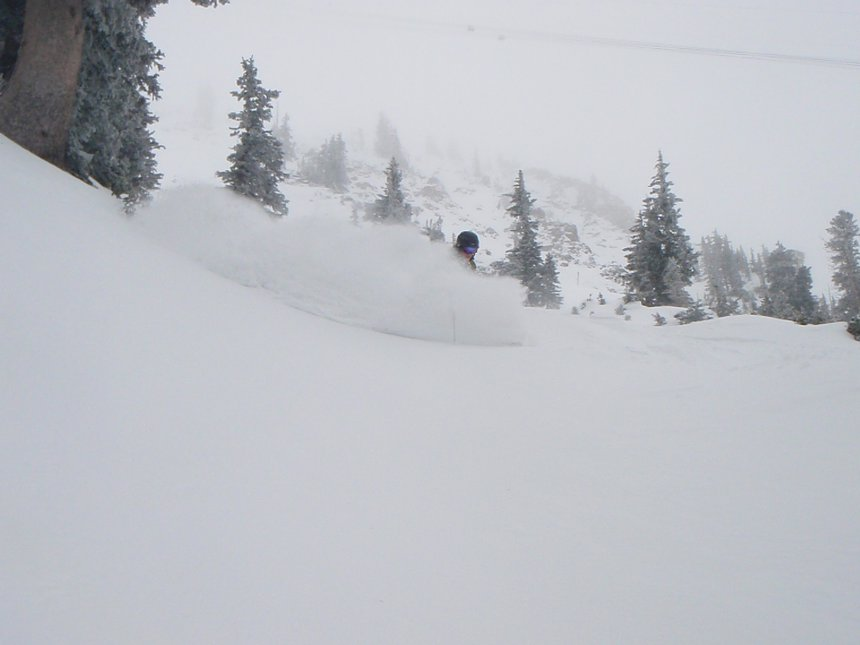 Early season pow
