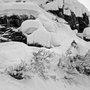 Deep Line in Alaska
