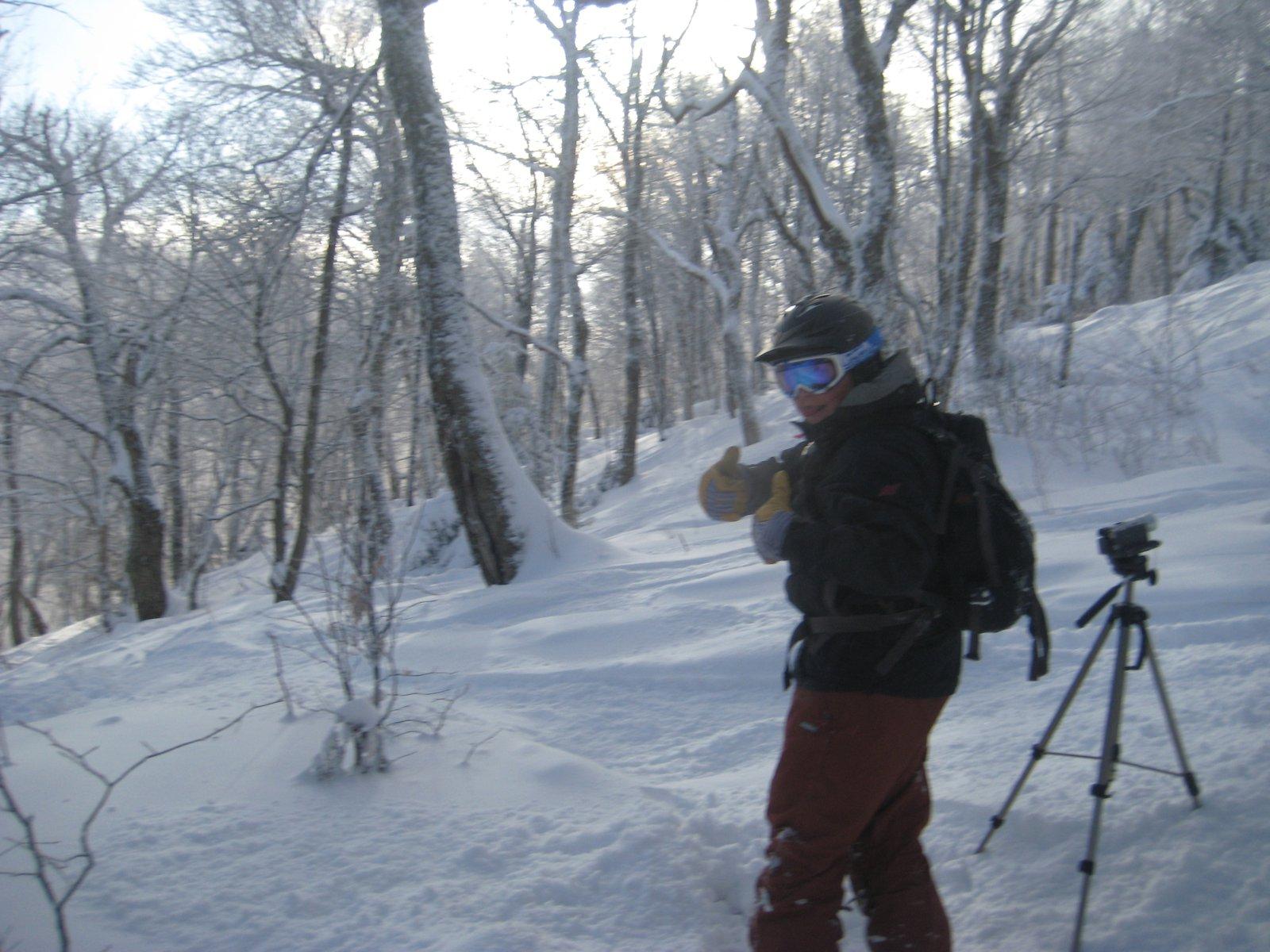 Woods at Jay Peak