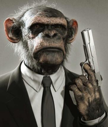 Da funky monkey