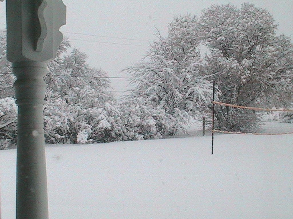 The Snow at my House