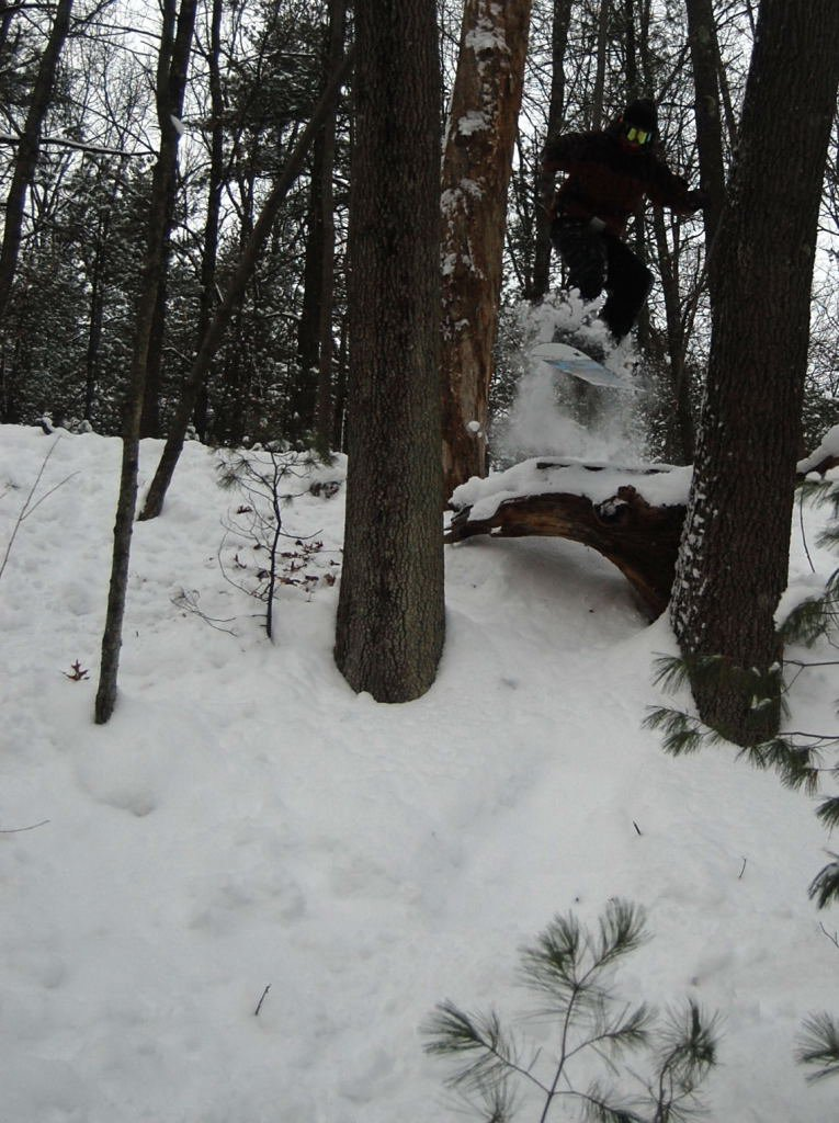 10 foot drop in the woods between and over trees