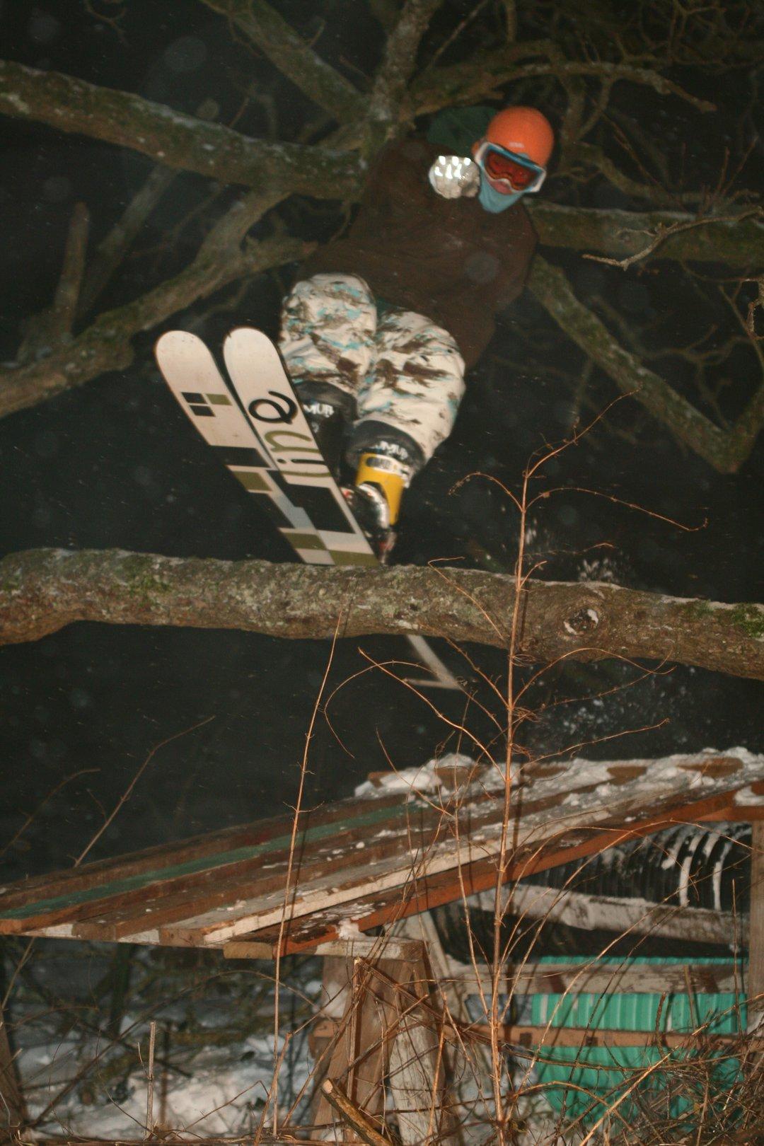 Kellin Lipp tree tappen