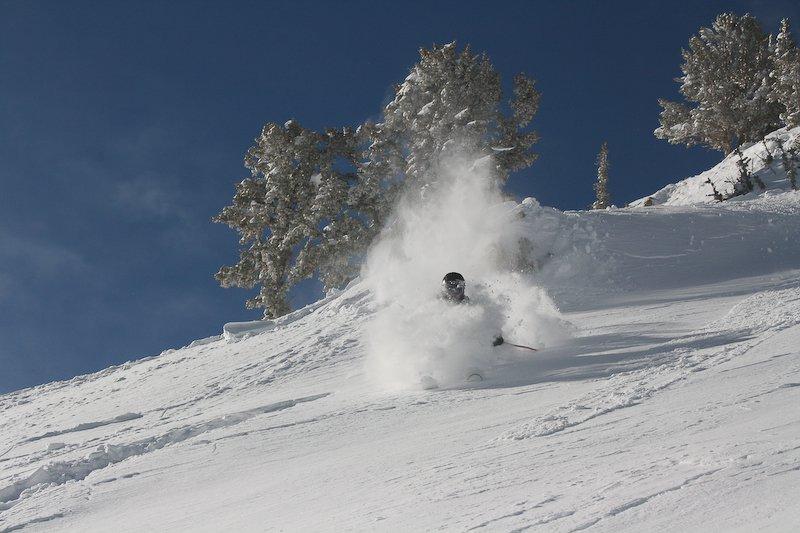 Pow Day at Snowbird