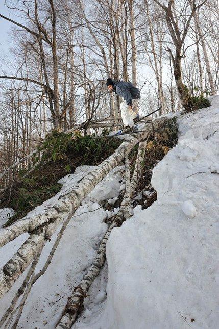 Log slide