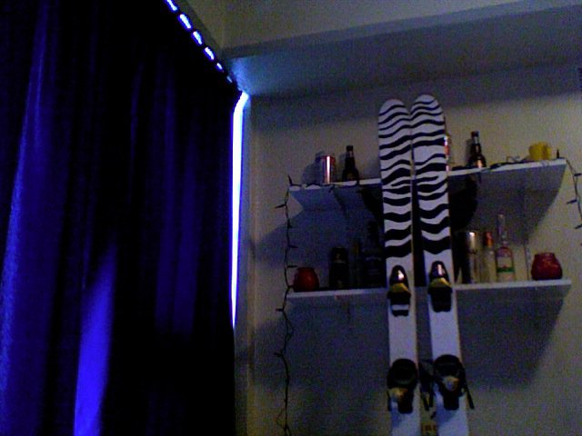 Zebra skis, top2