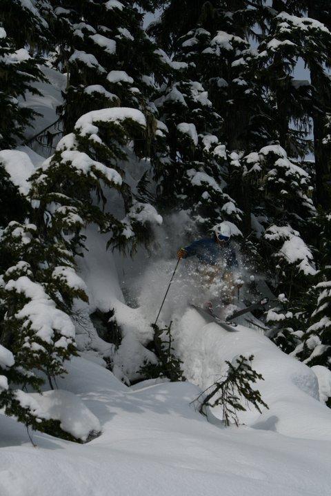 Log Skiing