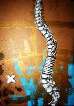 Spine...