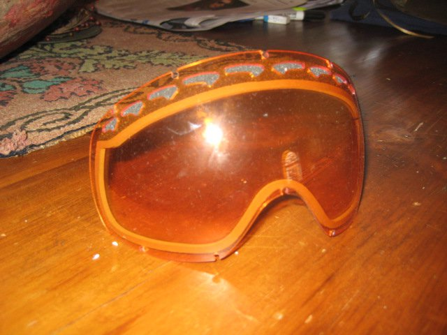 Persimmon Lense