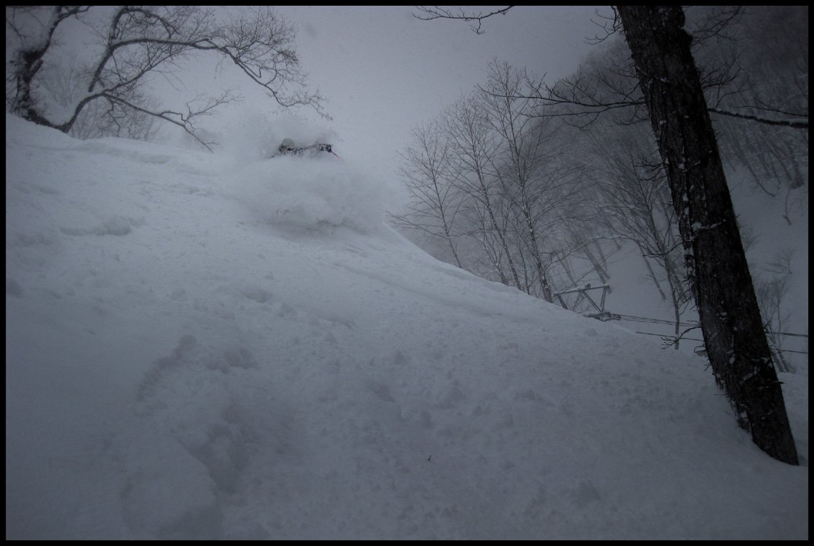 Shredding pow beside the lift