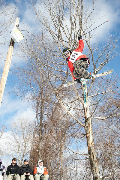 The ski is the tree